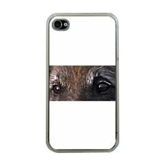 Belgian Tervueren Eyes Apple iPhone 4 Case (Clear)