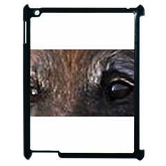 Belgian Tervueren Eyes Apple iPad 2 Case (Black)