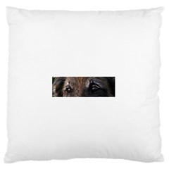 Belgian Tervueren Eyes Large Flano Cushion Cases (One Side)