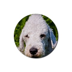Bedlington Terrier Rubber Round Coaster (4 pack)