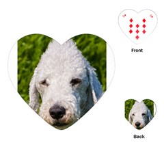 Bedlington Terrier Playing Cards (Heart)
