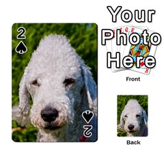 Bedlington Terrier Playing Cards 54 Designs