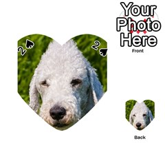 Bedlington Terrier Playing Cards 54 (Heart)