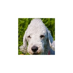 Bedlington Terrier YOU ARE INVITED 3D Greeting Card (8x4)