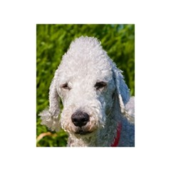 Bedlington Terrier Birthday Cake 3D Greeting Card (7x5)