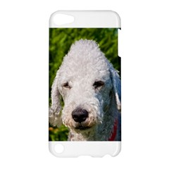 Bedlington Terrier Apple iPod Touch 5 Hardshell Case