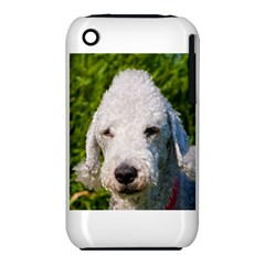 Bedlington Terrier Apple iPhone 3G/3GS Hardshell Case (PC+Silicone)