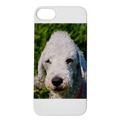 Bedlington Terrier Apple iPhone 5S Hardshell Case