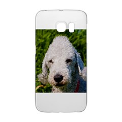 Bedlington Terrier Galaxy S6 Edge
