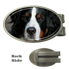 Bernese Mountain Dog Money Clips (Oval)