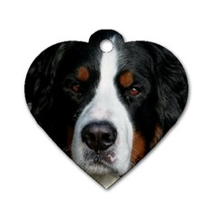 Bernese Mountain Dog Dog Tag Heart (Two Sides)