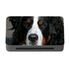 Bernese Mountain Dog Memory Card Reader with CF