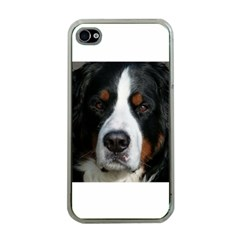 Bernese Mountain Dog Apple iPhone 4 Case (Clear)