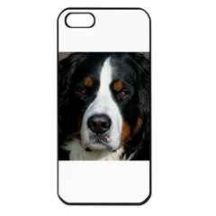 Bernese Mountain Dog Apple iPhone 5 Seamless Case (Black)