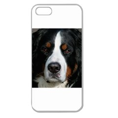 Bernese Mountain Dog Apple Seamless iPhone 5 Case (Clear)