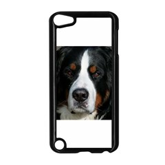 Bernese Mountain Dog Apple iPod Touch 5 Case (Black)