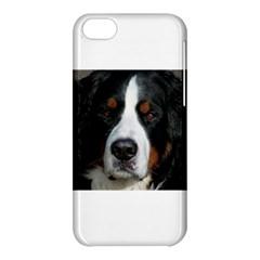 Bernese Mountain Dog Apple iPhone 5C Hardshell Case
