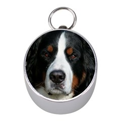Bernese Mountain Dog Mini Silver Compasses