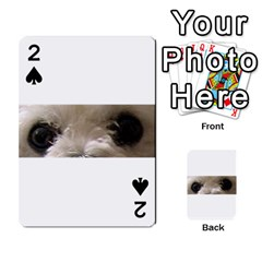 Bolognese Eyes Playing Cards 54 Designs
