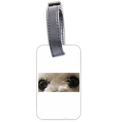 Bolognese Eyes Luggage Tags (One Side)