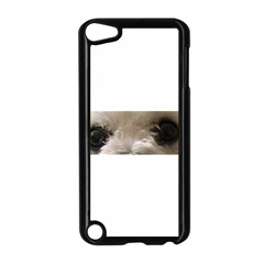 Bolognese Eyes Apple iPod Touch 5 Case (Black)