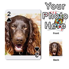 Boykin Spaniel Playing Cards 54 Designs