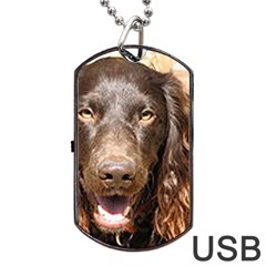 Boykin Spaniel Dog Tag USB Flash (Two Sides)