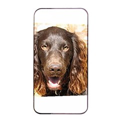 Boykin Spaniel Apple iPhone 4/4s Seamless Case (Black)