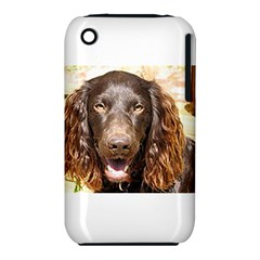 Boykin Spaniel Apple iPhone 3G/3GS Hardshell Case (PC+Silicone)