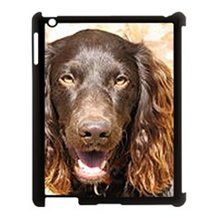 Boykin Spaniel Apple iPad 3/4 Case (Black)