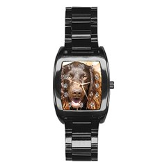 Boykin Spaniel Stainless Steel Barrel Watch