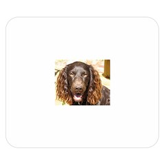 Boykin Spaniel Double Sided Flano Blanket (Small)