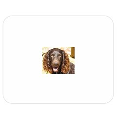 Boykin Spaniel Double Sided Flano Blanket (Medium)