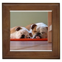 2 Sleeping Bulldogs Framed Tiles
