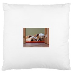 2 Sleeping Bulldogs Standard Flano Cushion Cases (Two Sides)