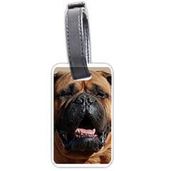 Bullmastiff Luggage Tags (Two Sides)