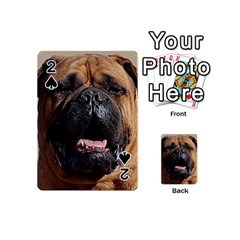 Bullmastiff Playing Cards 54 (Mini)