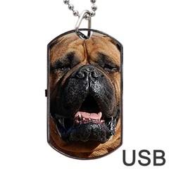 Bullmastiff Dog Tag USB Flash (Two Sides)