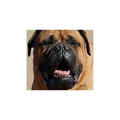 Bullmastiff YOU ARE INVITED 3D Greeting Card (8x4)