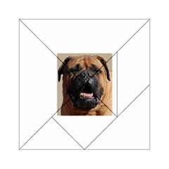 Bullmastiff Acrylic Tangram Puzzle (6  x 6 )