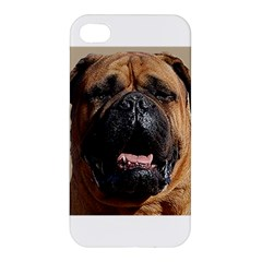 Bullmastiff Apple iPhone 4/4S Premium Hardshell Case