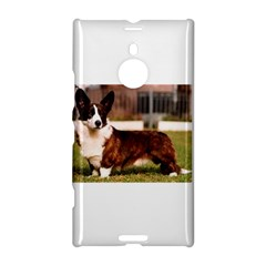 Cardigan Welsh Corgi Full Nokia Lumia 1520