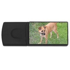 Carolina Dog Full 2 USB Flash Drive Rectangular (1 GB)