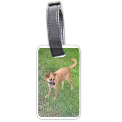 Carolina Dog Full 2 Luggage Tags (Two Sides)