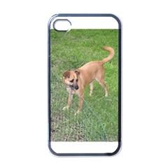 Carolina Dog Full 2 Apple iPhone 4 Case (Black)