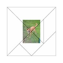 Carolina Dog Full 2 Acrylic Tangram Puzzle (6  x 6 )