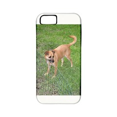 Carolina Dog Full 2 Apple iPhone 5 Classic Hardshell Case (PC+Silicone)