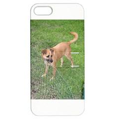 Carolina Dog Full 2 Apple iPhone 5 Hardshell Case with Stand