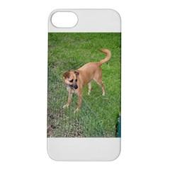Carolina Dog Full 2 Apple iPhone 5S Hardshell Case