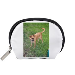 Carolina Dog Full 2 Accessory Pouches (Small)